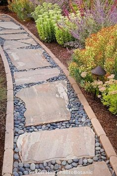 Stepping stone rock path in drought tolerant California garden Landscaping Project Landscape Idea Project Difficulty: Simple www.MaritimeVintage.com #Landscaping #Landscape #DIY #Howto #Project #ProjectIdea  #LandscapingDIY