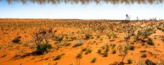 Would you like to experience the Australian Outback? Visit 4wdsafaris.com.au and find some memorable and inspiring journeys of Outback Queensland. Explore private bush tracks and stunning country with us.