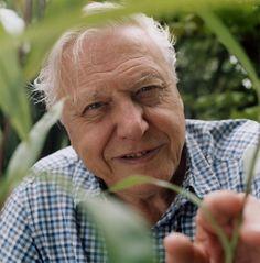 Attenborough. #Atheist