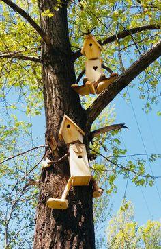 Bird House Kits Make Great Bird Houses Garden Crafts, Garden Projects, Wood Projects, Bird House Plans, Bird House Kits, Bird House Feeder, Bird Feeders, Squirrel Feeder, Bird Houses Diy