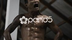 Muay Thai Boxing Fighter Warming Up Before Fight Shadowboxing Slow Motion - Stock Footage | by RyanJonesFilms