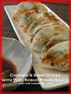 Chicken & Shiso Gyoza with Yuzu Kosho Ponzu Sauce Recipe | JustOneCookbook.com