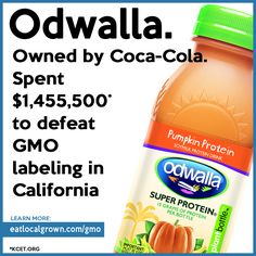 Did you know that Coca-Cola owns Odwalla drinks. Pepsi, Coca Cola, General Mills, Doritos, Gmo Facts, Genetically Modified Food, What You Eat, Ms Gs, Genetics