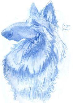 Animal Caricatures No. 9 by SuperStinkWarrior on deviantART
