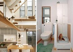 Does It Come Fully Fur-nished? Dream Home Designed Especially For Cats To Enjoy