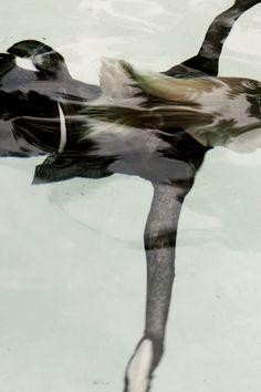 swim (more @ boards here :  http://pinterest.com/fra411)