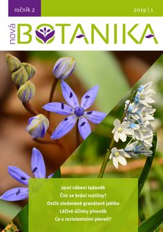 Vychází již 30. května 2019. Nova, Plants, Plant, Planets
