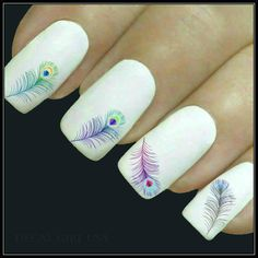 Nail Decal Feather Nail Art 20 Peacock Feather by DecalGirlUSA
