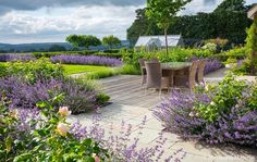 Contemporary Country Garden - Surrey