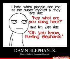 gotta watch out for the elephants