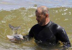 Hombre que salvó a un bebe delfín.