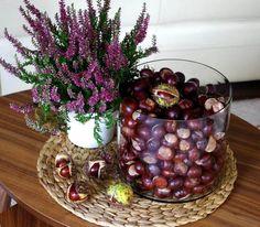 Heidekraut Pflanze und Vase mit Kastanien
