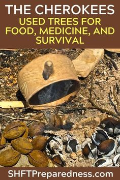 The Cherokees Used Trees for Food, Medicine, and Survival There are those articles that stir ideas, that offer small smatterings of information often prefaced with a bold title. Survival Quotes, Survival Food, Camping Survival, Outdoor Survival, Survival Prepping, Survival Skills, Survival Supplies, Survival Weapons, Survival Hacks