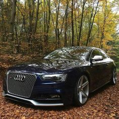 Awesome Audi 2017: Nice Audi 2017: 14441138_544369152427408_8781304655710036724_n.jpg (960×960)...... Car24 - World Bayers
