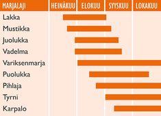 Arktiset Aromit ry Bar Chart