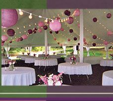 40 tissue paper pompoms wedding decorations custom colors purple awesome tent dcor visit customeventsbysarah for more wedding ideas junglespirit Choice Image