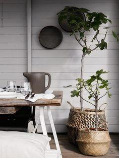 Mesa de Verano Natural