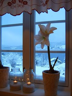 window.view.snow.candles.