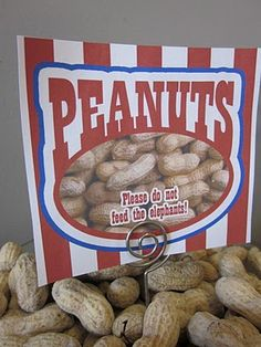 Peanut for Circus Party