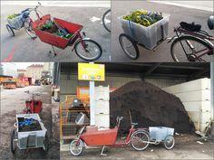 Cargo bike, Bakfiets + Carry Freedom Cargo Bike, Freedom, Bicycle, Adventure, Frame, Liberty, Bicycle Kick, Political Freedom, Bike
