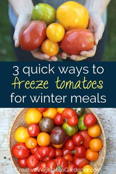Wondering how to preserve tomatoes easily? Here are three methods that don't involve heating up your kitchen with canning! #gardening #vegetablegarden #tomatoes #preserving #freezing Freezing Tomatoes, Preserving Tomatoes, Freezing Vegetables, Freezing Fruit, Growing Vegetables, Fresh Vegetables, Fruits And Veggies, Vegetable Garden Tips, Homemade Salsa