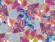 Botanica by Jessica Pitcher.