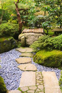 Stepping stones through dry stream to well. Portland Japanese Garden.  Rhododendrons and azaleas.