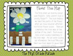 First Grade Parade - Flower Tree Map! Teaching Plants, Teaching Science, Mad Science, Weird Science, Science Ideas, Teaching Ideas, Science Anchor Charts, Reading Anchor Charts, First Grade Science