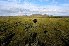 Pregopontocom Tudo: Ampliação adequada do Parque dos Veadeiros pode pode garantir proteção a 50 espécies...