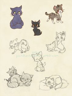CATS * 3 *