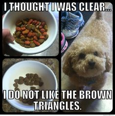 @Meredith Sinclair remember how I bought charlie new food, i mixed it into moms dog food and he will eat around the little brown triangles