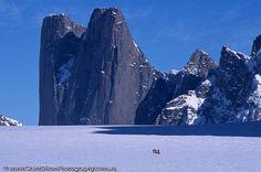 Mt Asgard Grant Dixon Photography