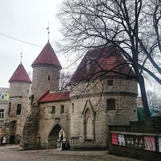 Old Town Tallinn Old Town, Barcelona Cathedral, Travelling, Mansions, Architecture, House Styles, World, Building, Castles
