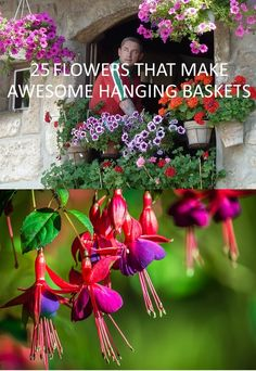 Not sure which flowers to use for hanging baskets? Here are 25 suggestions. Check out the list. #hangingbasket #flowers #garden