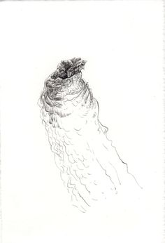 256 Seed Bank, Abstract, Drawings, Artwork, Natural Forms, Studio, Summary, Work Of Art, Auguste Rodin Artwork