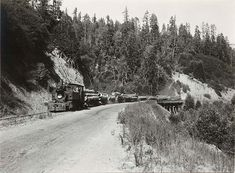 Redwood log train belonging to the Caspar Lumber Company, on its way to Caspar from Chamberlain Creek