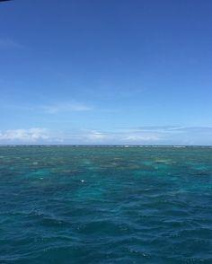 No Filter needed for this amazing Great Barrier Reef - Look awesome  #Today #nomakeup #summer #instafollow #australia #australien #instagram #greatbarrierreef #snorken #scubadive #cairns #qld #queensland #gbr #girl #girls #friends #love #tattoo #tattoogirl #ocean #reef #koralle #fish #fishies #turtle #swim #bikini #boat by _prinzesschen http://ift.tt/1UokkV2