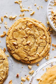 These chewy peanut butter cookies are made using the pan banging method. It creates large but thin cookies with a chewy ripple around the edges. The center is soft and peanut buttery with a crispy exterior. #panbanging #peanutbuttercookies #peanutbutter #cookies #butternutbakery | butternutbakeryblog.com Cookie Desserts, Cookie Recipes, Dessert Recipes, Tea Cakes, Chocolate Chip Cookies, Biscotti, Chewy Peanut Butter Cookies, Cupcakes, Cookies Et Biscuits