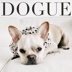 Cover Model for Dogue