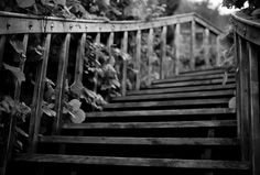 wooden stairs to nowhere