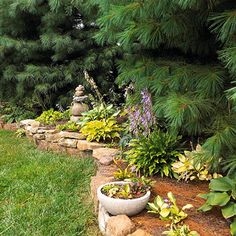 Ideas For Planting Under Pine Trees PDF