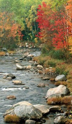 Beautiful Nature Pictures, Amazing Nature, Beautiful Landscapes, Landscape Photos, Landscape Art, Landscape Paintings, Fall Pictures, Pictures To Paint, Autumn Scenes