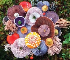 Nature has unlimited potential for us to explore and experience. Nature is the greatest art ever been created. Meet Jill Bliss, an artist Mushroom Art, Mushroom Fungi, Mushroom Species, Mushroom Ideas, Mushroom Hunting, Wild Mushrooms, Stuffed Mushrooms, Ikebana, Organic Forms
