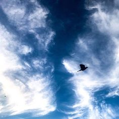 Vision du soir #jmvoge #sky#meeting #fly #flying #nomade #dream #hope #photooftheday #clouds #believe #vision #light #travel #lines #noend Believe, Jean Michel, Clouds, Sky, Instagram, Travel, Outdoor, Voyage, Outdoors