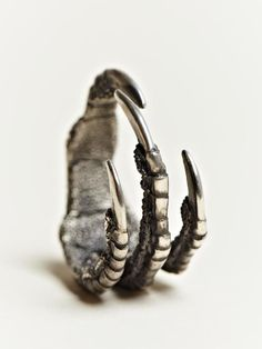 Silver Claw Ring by Ann Demeulemeester