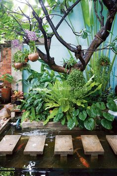 bali garden