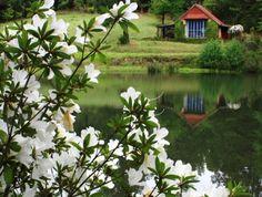 Image result for sequoia garden retreat