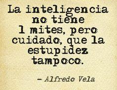 La inteligencia no tiene límites, pero cuidado, que la estupidez tampoco.  Alfredo Vela
