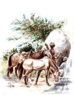 Faruk Kutlu, Caucasian horseman