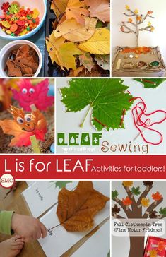 These leaf activities and crafts are fabulous - my toddler is going to love them! Click on the picture to see them all.